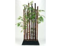 Bamboo Plant Divider Image 11