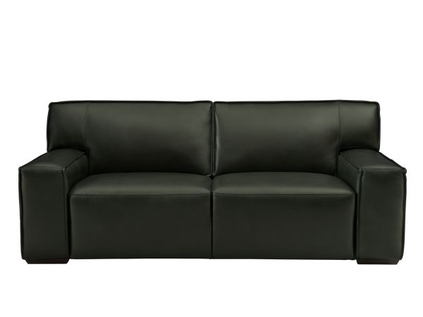 Chase Green Leather Sofa 1