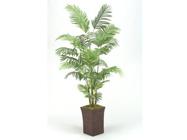 """7"""" Palm"""