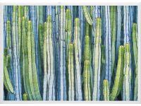Cactus I Framed Artwork Image 3