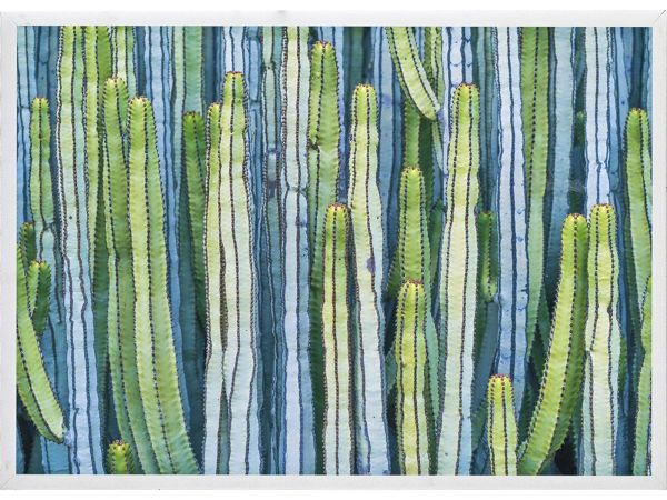 Cactus I Artwork