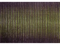 Boardwalk Green Signature Area Rug Image 1