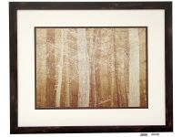 Forestry Framed Artwork Image 756